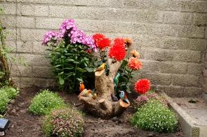 Versier je tuin met Keniaanse vogeltjes
